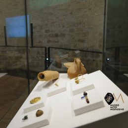 MUSEO DELL